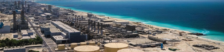 Continuous seawater desalination through permanent plant protection.